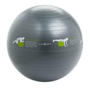 Balance Ball, Self-Guided Stability Ball, Gaiam Restore