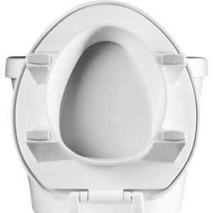 Toilet Seat, Raised, Bemis CLEANSHIELD
